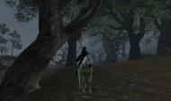 Athlas a její vypraný kůň. :)