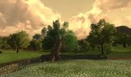 po dlhšej dobe som zapol Ultra nastavenie, a nejako mi nejde vrátiť aj kvalitu stromov (tie okolo)