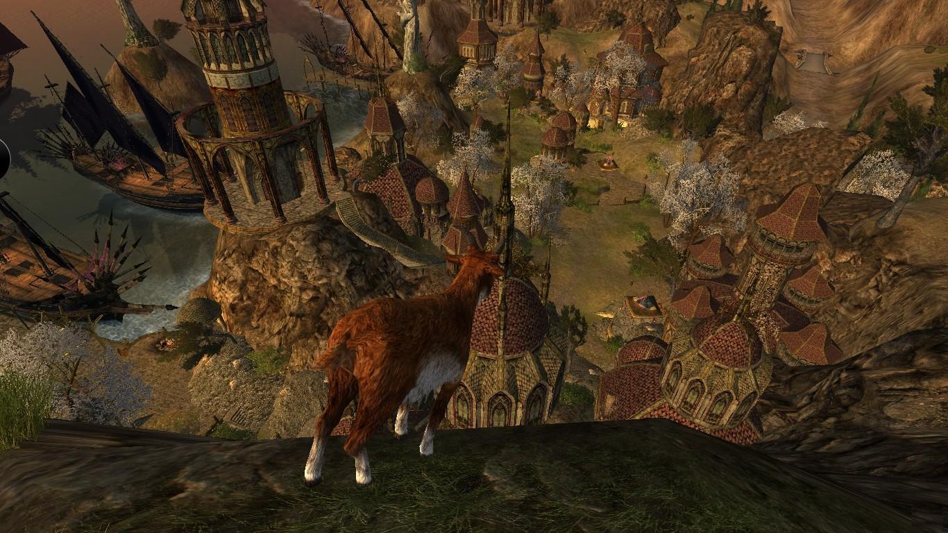 Koza - vošla mi do záberu, popozerala sa dole a odišla :)